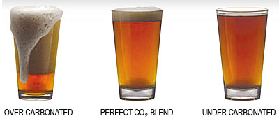 beer perfect pour, not over-carbonated, and not flat
